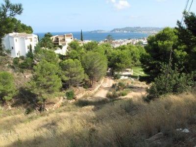 Sea View Properties